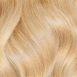 #22 (Sahara Blonde)
